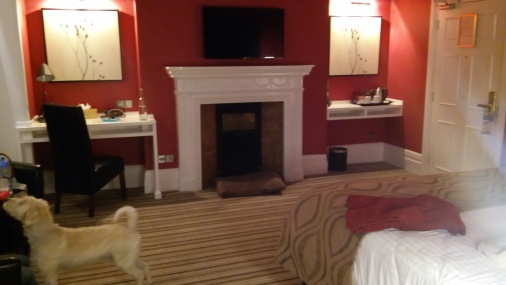 The spacious bedroom, we were treated to for this night.