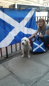 This dog is pro-Scotland all the way!